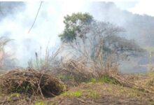 En Ixtaczoquitlán sofocan incendio de pastizal