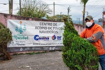 Invitan a aprovechar campaña Recicla tu Navidad en Córdoba