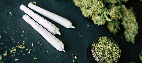"""HABRÁ MAS """"BIEN MACHINES""""…Regulación de la marihuana se votará este 8 de marzo en Cámara de Diputados"""