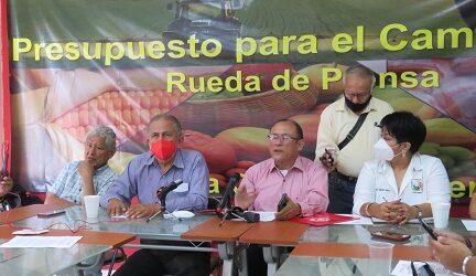 Desarrollo del campo mexicano no es prioridad del  gobierno federal: Movimiento Campesino Veracruzano