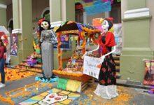 Invita Ayuntamiento de Córdoba a escuelas a participar en muestra de altares
