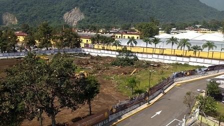 Ecocidio por ecologistas de Orizaba, talan  20 pinos del campo Cerritos: denuncian